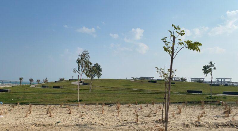 DAREEN EAST BEACH PHASE II & PARKS IMPROVEMENTS 2